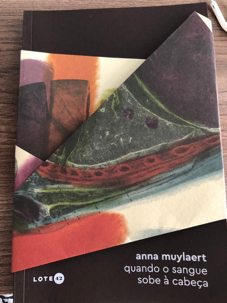 """Resenha – Livro """"Quando o Sangue Sobe à Cabeça"""", de Anna Muylaerte (Ed. Lote42)"""